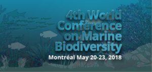 4-conference_Морское биоразнообразие